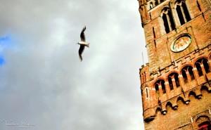 Bruges00027